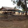 Safari-Park-NP-Brijuni